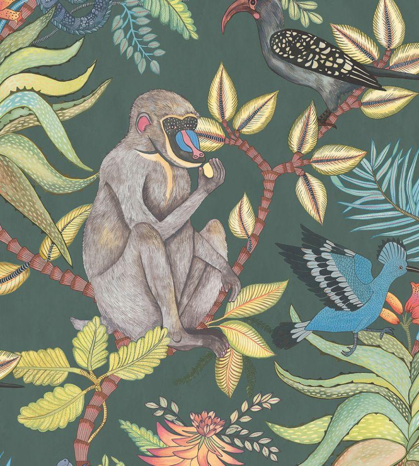 Savuti - 1006 wallpaper   Ardmore   Cole & Son